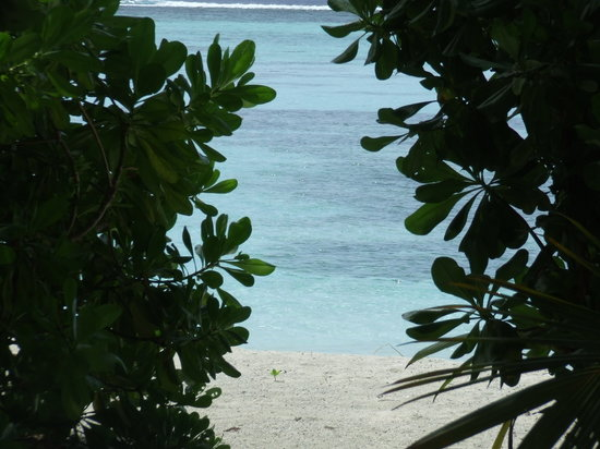 Meemu Atoll: View from beach villa 186