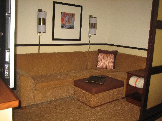 Hyatt Place Atlanta/Downtown: living area