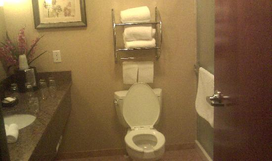 Holiday Inn Hotel & Suites Grand Junction-Airport: Bathroom