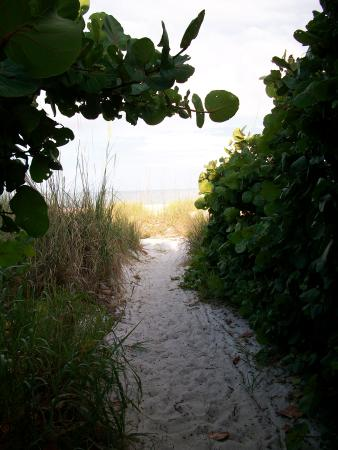 Spinnakers Vacation Cottages: The path to the beach.