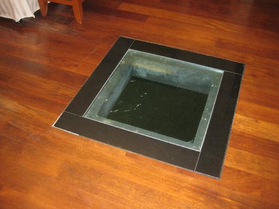 The glass panel on the room floor picture of port for Floor to ceiling glass panels