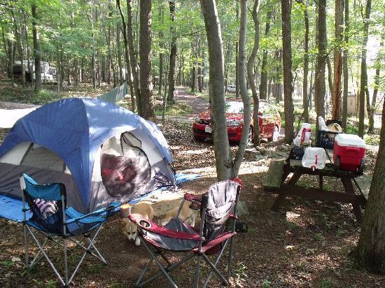 Paw Paw, WV: Our campsite.