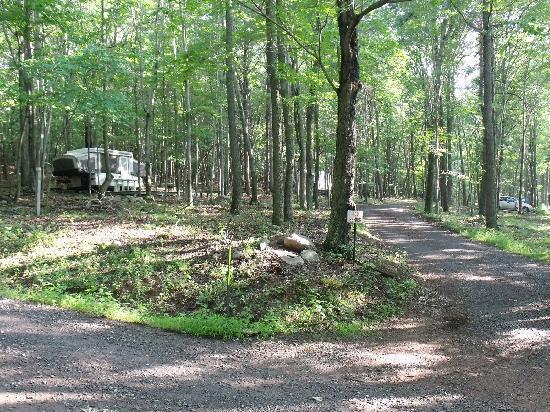 Paw Paw, WV: One of the camping sections.