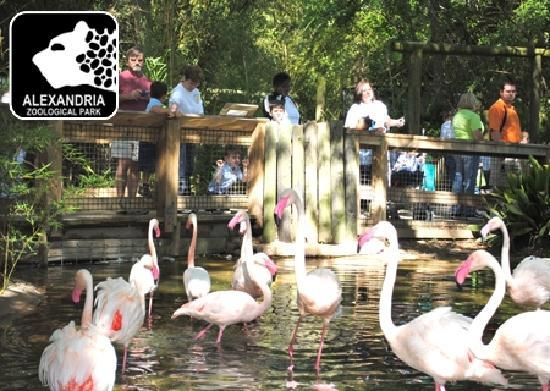 Alexandria Zoological Park