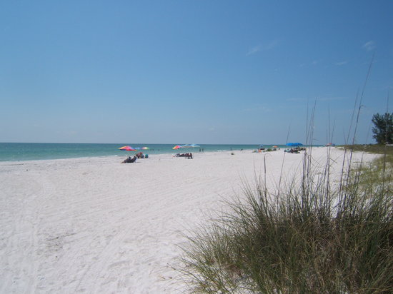 Indian Shores, : The beach over the road from the Barefoot Beach Resort