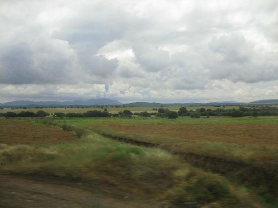 Ciudad Real, Spanien: Countryside in between the airport and town