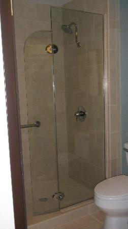 Hyatt Place South Bend: shower &amp; tub.  not a roomy area, needs a door