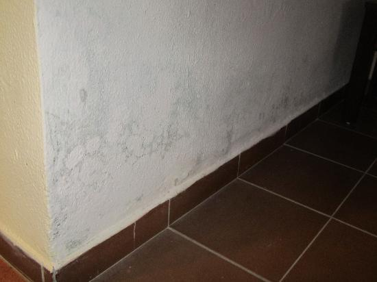 hotel be live turquesa mold on bedroom wall dangerous for health