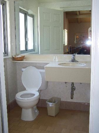 Town House: Decent sized bathroom, full bath the the right, not in camera view.
