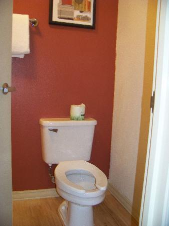 Red Roof Inn - Southpoint: the bathroom
