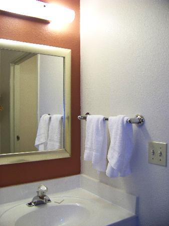 Red Roof Inn - Southpoint: the sink area