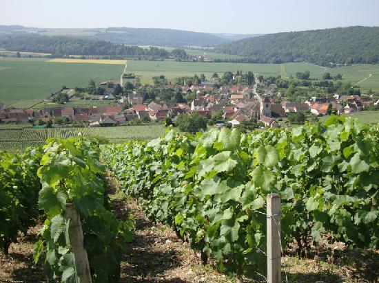 les vignes de champagne fotograf a de charly sur marne aisne tripadvisor. Black Bedroom Furniture Sets. Home Design Ideas