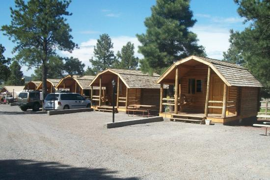 Photo of Circle Pines KOA Campground Williams