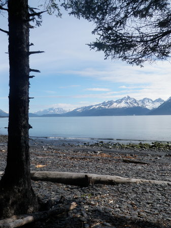 Seward, : A view from one of the beaches we stopped at