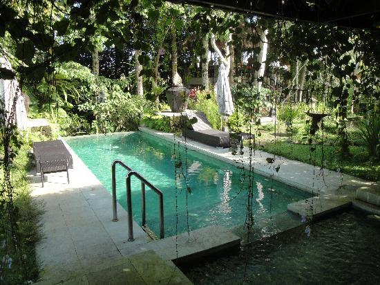 Villa Puri Darma Agung: The pool