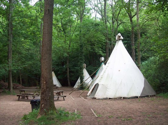 Hay-on-Wye, UK: View of another camping area with tepees.