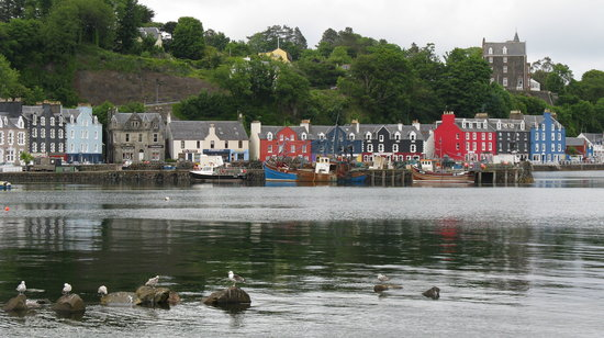 Isle of Mull restaurants
