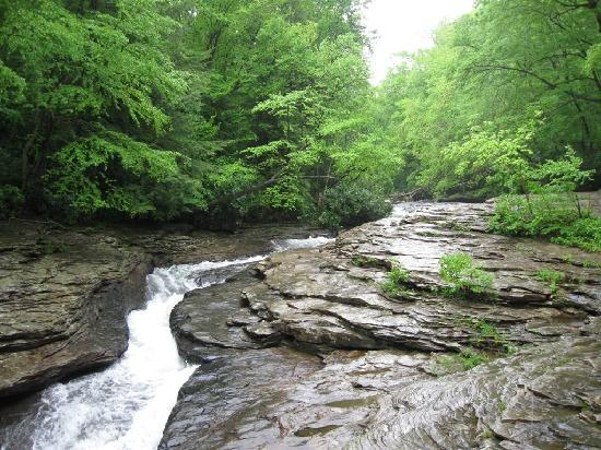 Cucumber Falls W Natural Waterslide Picture Of Ohiopyle