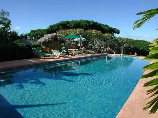 Banyan Bed and Breakfast: Banyan Tree House Swimming Pool on Maui