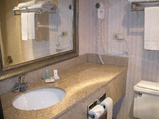 Red Roof Inn Gurnee - Waukegan: Bathroom