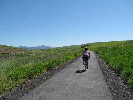 View along the Bill Chipman Bike trail outside Pullman, WA