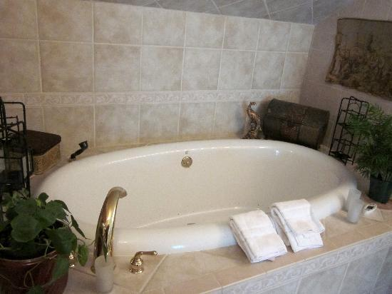 , : wonderful hydrotherapy tub for two