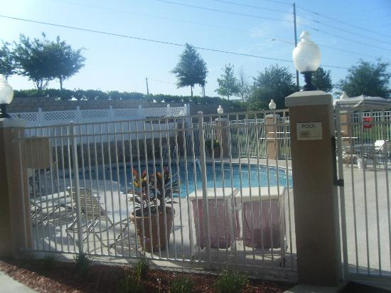 Fairfield Inn & Suites Clermont: The Pool Area