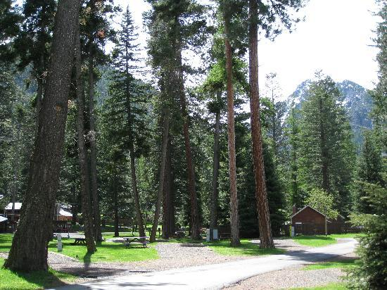 Eagle Cap Chalets and Park at the River: Park at the River RV Park - Joseph