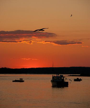 Robbins Motel: Sunset in Bar Harbor