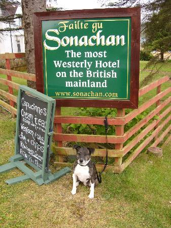 Kilchoan, UK: The most westerly B and Bing Dog on British Mainland