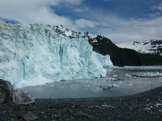 Parc national de Kenai Fjords, AK : Aialik Glacier - Our view during lunch
