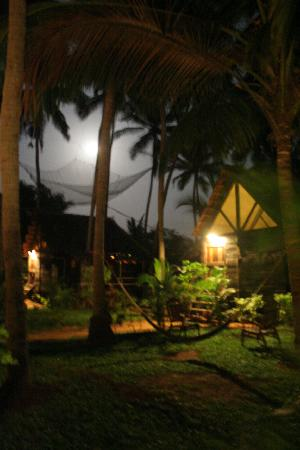 Leela Cottages: Our cottage at night