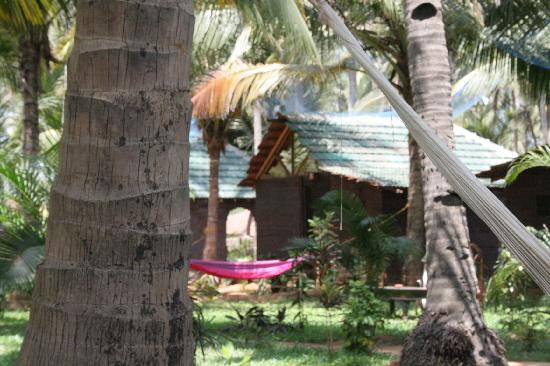 Leela Cottages: Hammocks and garden chairs dotted about