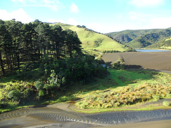 Auckland, Nya Zeeland: black sand dune