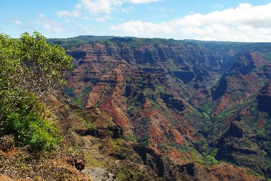 Bamboo Jungle House: Waimea Canyon