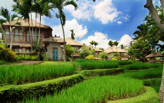 Kamandalu Resort and Spa, Ubud, Bali
