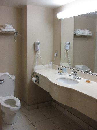 Humphry Inn & Suites Winnipeg: bathroom