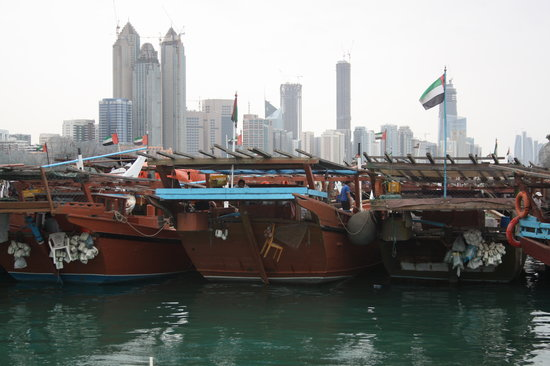 Abu Dhabi, Förenade Arabemiraten: Fishing boats