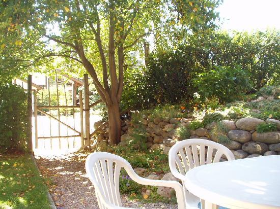 Columbine House: private guest patio - sit out and enjoy our peaceful neighbourhood