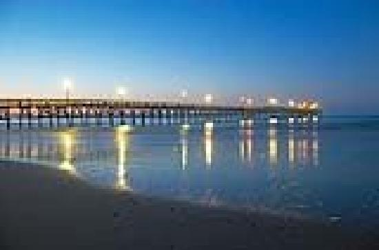 Catch prize winning fish at the cherry grove fishing pier for North myrtle beach fishing pier