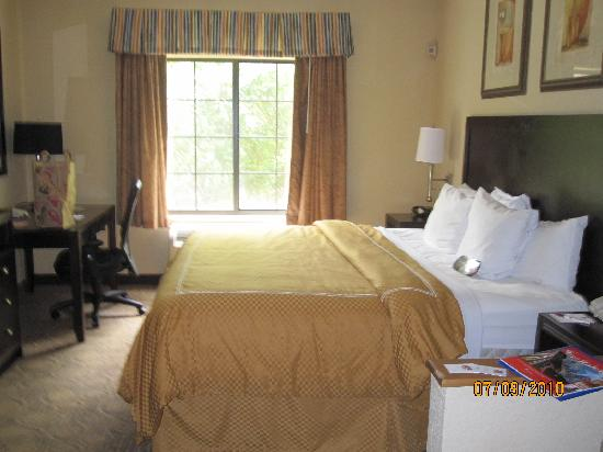 Comfort Suites Regency Park: Room at the Comfort Suites, Cary, NC