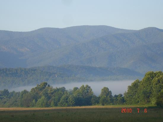 Townsend, TN: Cades Cove #1