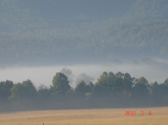Townsend, TN: Cades Cove #2