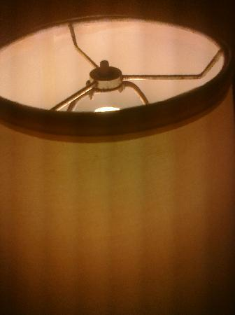 The Lord Inn Hotel: loose lampshade