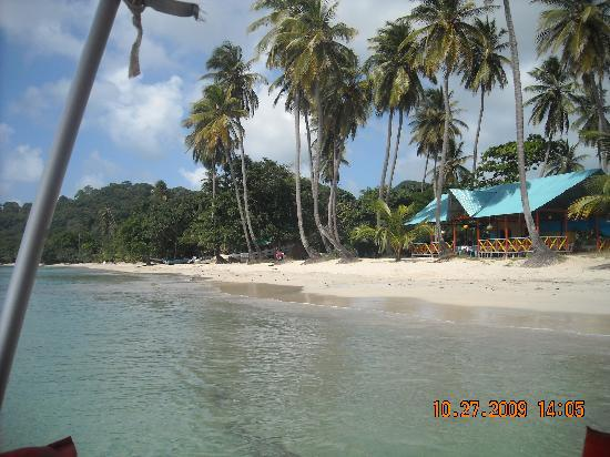 Bed & breakfast i Providencia Island