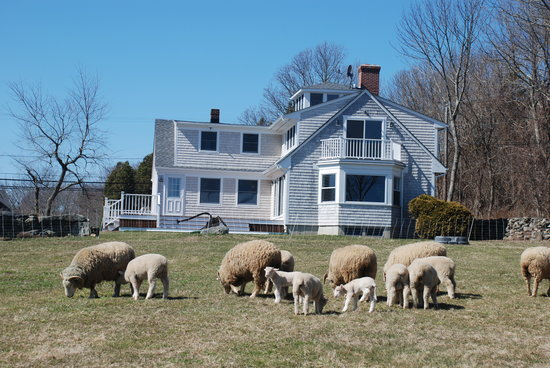 Stonehaven Family Farm