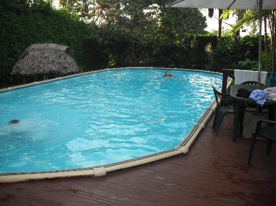 lovely swimming pool that was cleaned each morning - Picture of ...