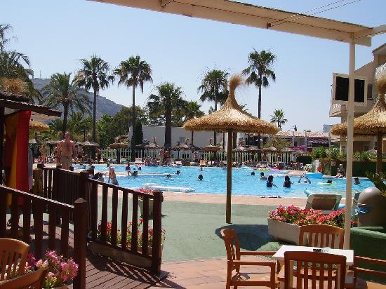 Grupotel Port d'Alcudia: the poolside bar