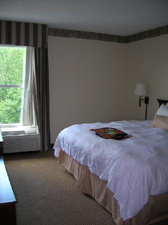 Hampton Inn and Suites Charlotte - Arrowood Rd.: super comfy bed