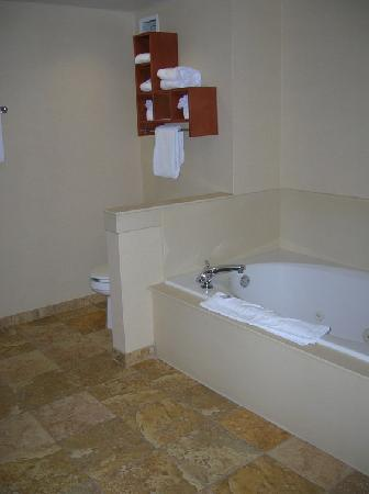 Hampton Inn and Suites Charlotte - Arrowood Rd.: huge bathroom with separate shower and tub